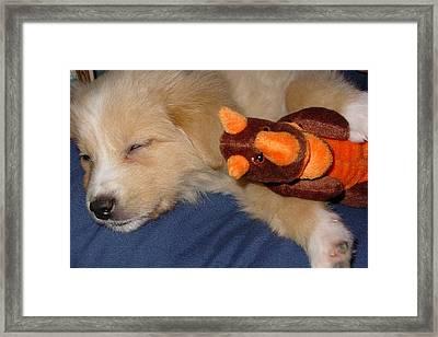 Puppy Love Framed Print by Wide Awake Arts