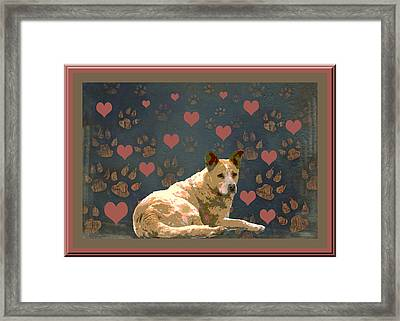 Puppy Love Framed Print by One Rude Dawg Orcutt