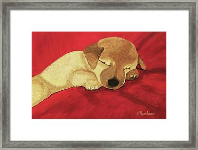 Puppy Nap Time Framed Print
