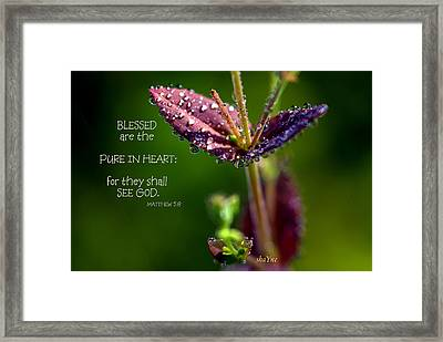 Pure In Heart Framed Print by Shayne Johnson Fleming