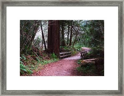 Purisima Creek Bridge Framed Print