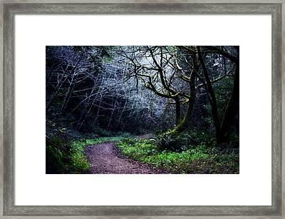 Purisima Creek Trail Framed Print
