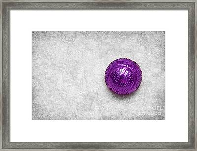 Purple Ball Cat Toy Framed Print by Andee Design