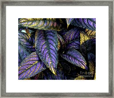 Purple Beauties Framed Print