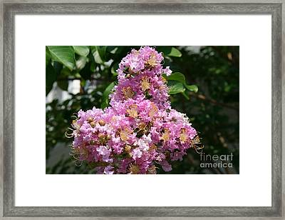 Framed Print featuring the photograph Purple Cross by Michael Waters