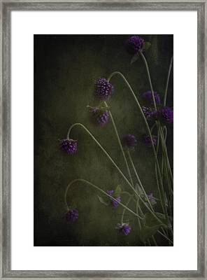 Purple Drops Framed Print by Carolyn Dalessandro