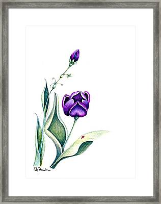 Purple Fantasy Framed Print by Paula Greenlee