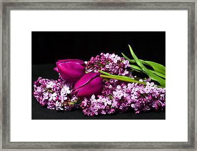 Purple Flowers Framed Print by Trudy Wilkerson