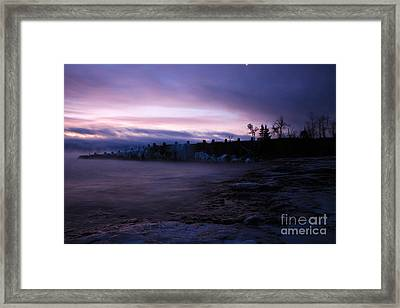 Purple Gooseberry Framed Print by Jamie Rabold