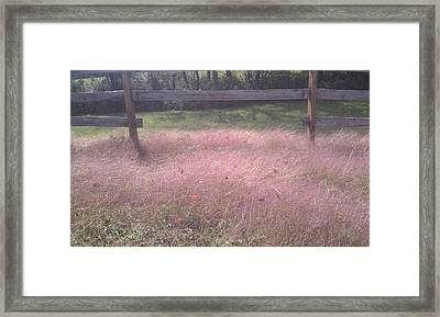 Purple Haze Of Fall Framed Print by Paula Deutz