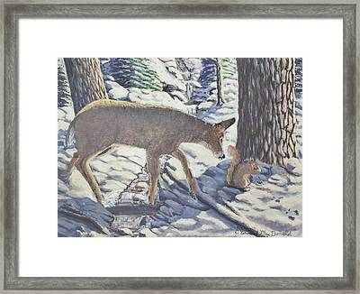 Purple In The Shadow Framed Print