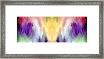 Purple King Framed Print by Danny Lally