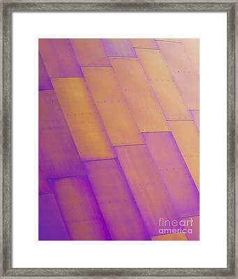 Purple Orange I Framed Print