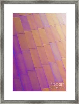Purple Orange Two Framed Print