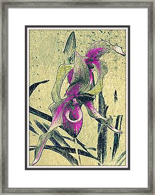 Framed Print featuring the mixed media Purple Orchid  by Irina Hays