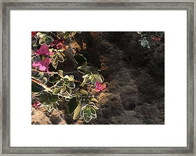 Framed Print featuring the photograph Purple Sage And Desert Rock In Morning Light by Louis Nugent
