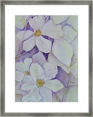 Purple Shades Framed Print