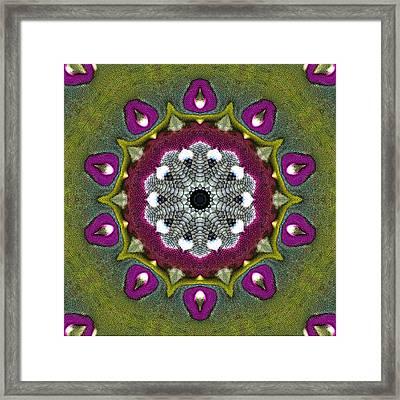Purple Snakeskin Flower Framed Print by Alec Drake