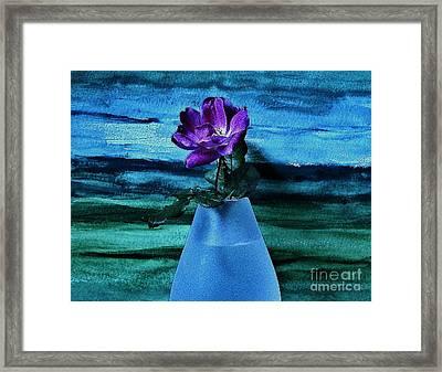 Purple Tea Rose Framed Print by Marsha Heiken