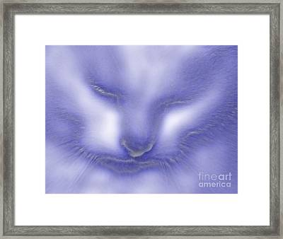Digital Puss In Blue Framed Print by Linsey Williams