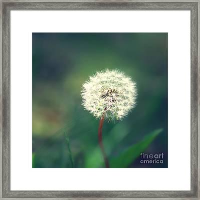 Pusteblumen Art Framed Print