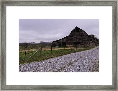 Put Out To Pasture  Framed Print