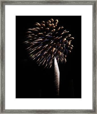 Pyrotechnic Palm Framed Print by Sandi Blood
