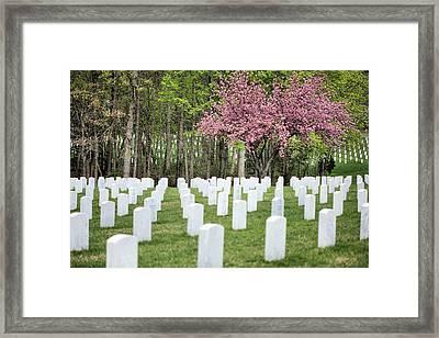 Quantico National Cemetery Framed Print