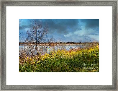 Quarry Lakes In Fremont California . 7d12643 Framed Print by Wingsdomain Art and Photography