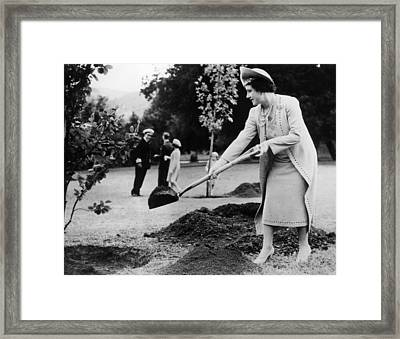 Queen Elizabeth, The Former Duchess Framed Print