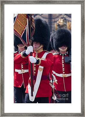 Queens Guards Framed Print