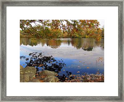 Queen's River Reflection Framed Print