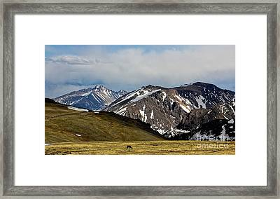 Framed Print featuring the photograph Quiet Acres by Everett Houser