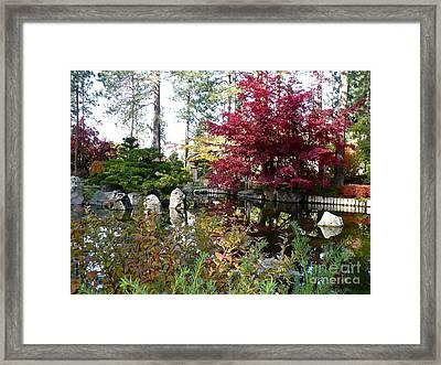 Quiet Autumn Pond Framed Print by Carol Groenen