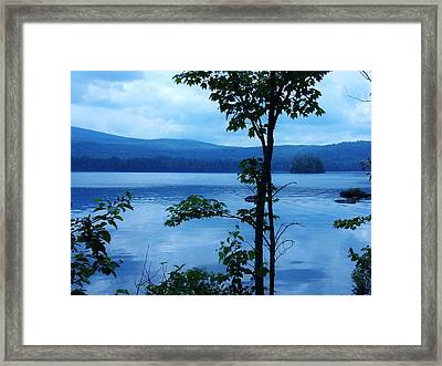 Quiet Lake Framed Print by Sarah Buechler