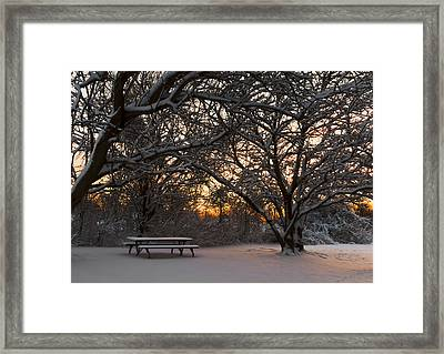 Quiet Moment Before Dawn Framed Print