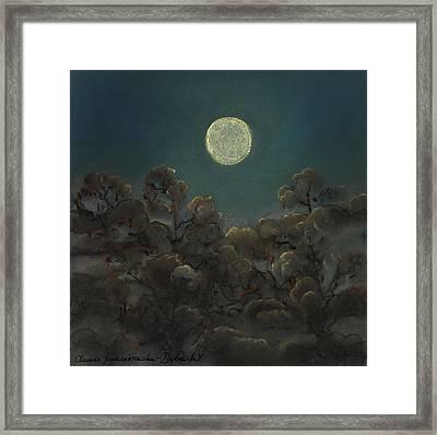 Quiet Night Framed Print by Anna Folkartanna Maciejewska-Dyba