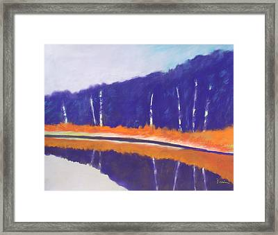Quiet Pond Framed Print by Karin Eisermann