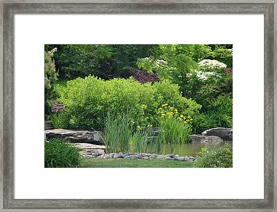 Quiet Pond Framed Print by Michael Carrothers