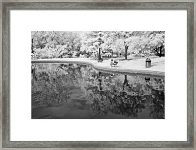 Quiet Spot Framed Print