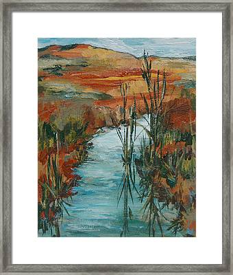 Quiet Stream Framed Print by Sandy Tracey
