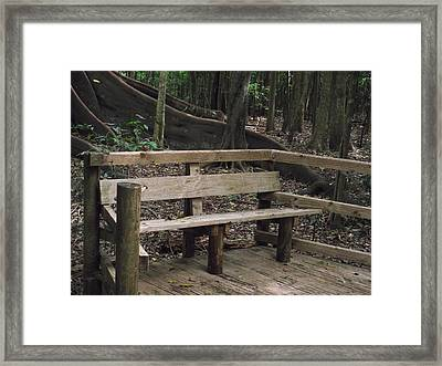 Quiet Time Framed Print by Rani De Leeuw