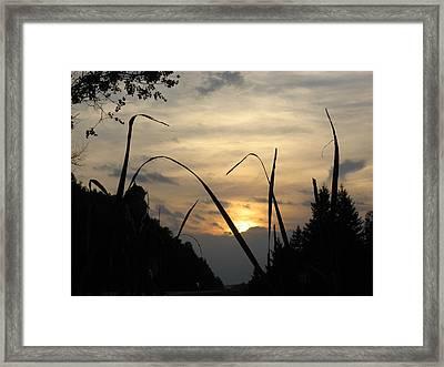 Quietness  Framed Print by Kimberly Davidson