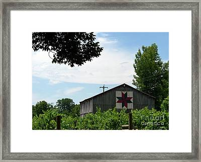 Quilted Barn And Vineyard Framed Print by Charles Robinson