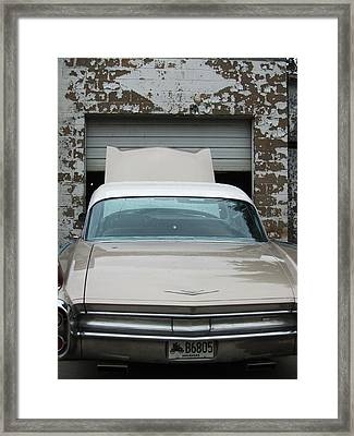 Quite A Cad Framed Print by Todd Sherlock