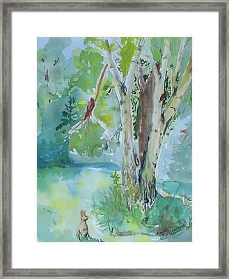 Rabbit And Maple Framed Print