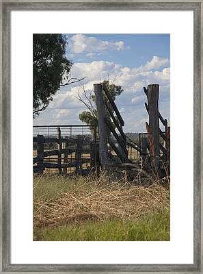 Framed Print featuring the photograph Race In The Paddock. by Carole Hinding