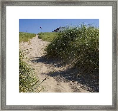 Framed Print featuring the photograph Race Point by Michael Friedman
