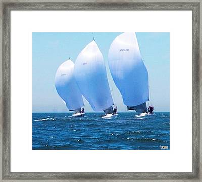 Racing For Home Framed Print by Paula Greenlee
