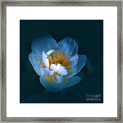 Radiance Framed Print by Gerlinde Keating - Galleria GK Keating Associates Inc